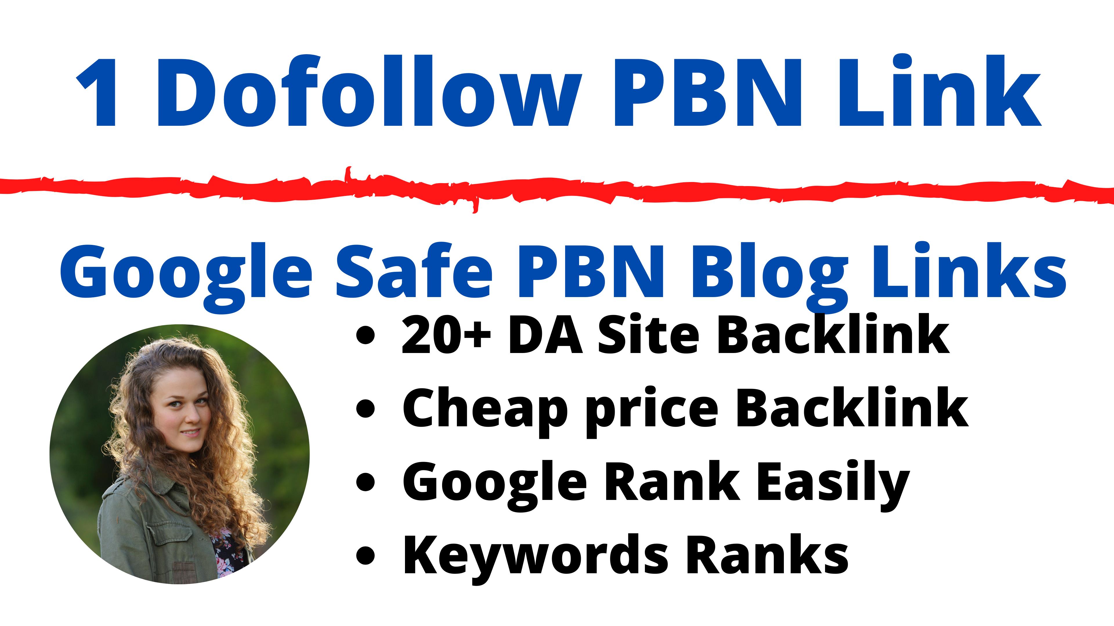 1 PBN Blog Dofollow Backlinks 20+ DA,  30+ PA Lifetime Cheap Price