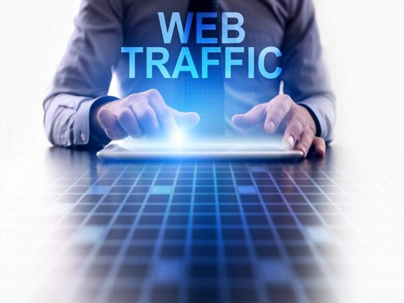3500 Web Visitor Authentic Traffic Adsense Friendly