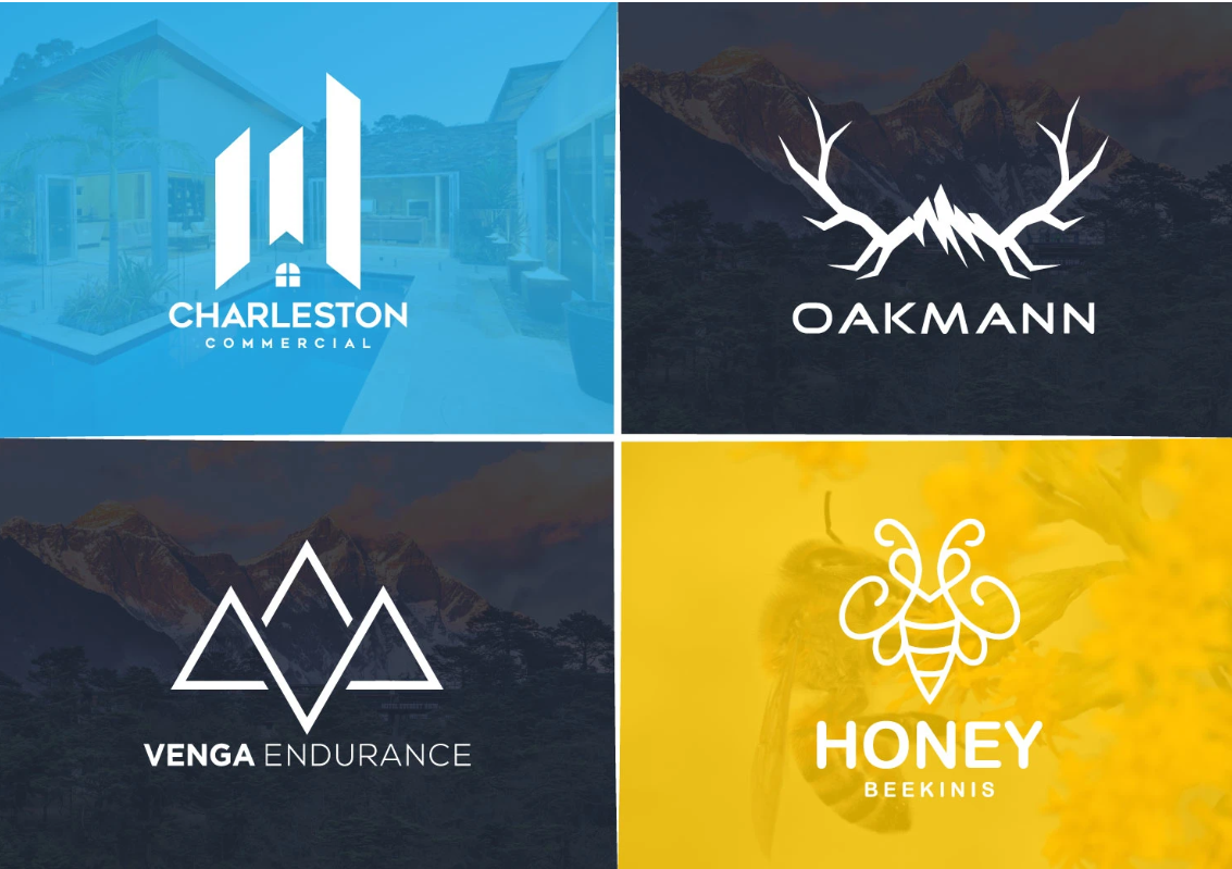 I will design modern flat minimalist business logo design within 24hours