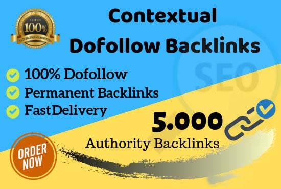 Build 5000 contextual dofollow authority backlinks for SEO ranking