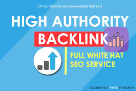 Do high authority SEO backlinks service for fast google ranking