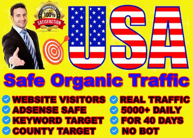 I will send safe organic website traffic from USA