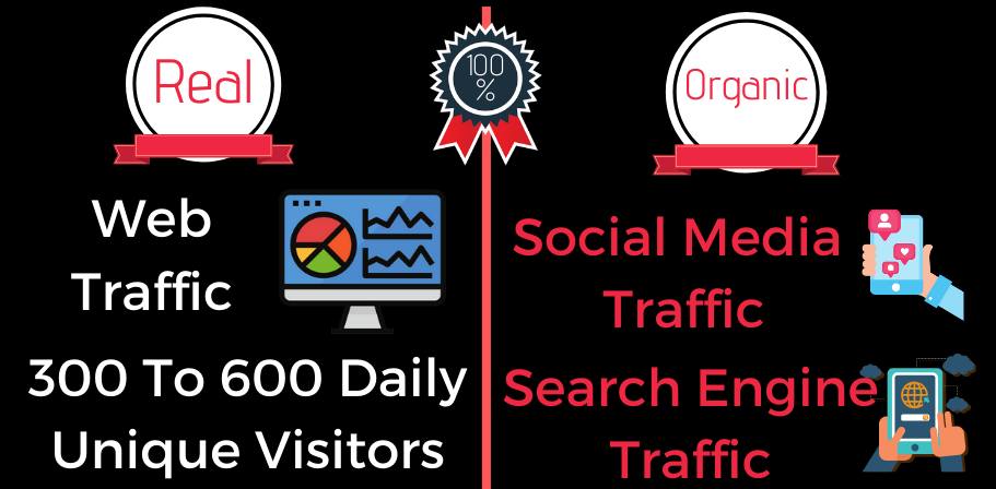 I Will Drive Real,  Organic And Social Media Web Traffic - 300 To 600 Daily Visitors - All Countries