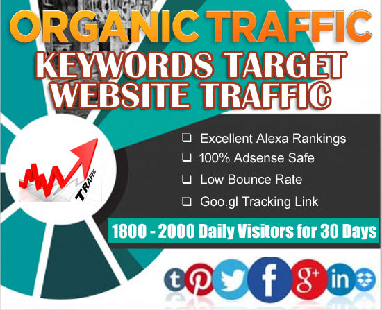 Get Real Website Traffic for 30 Days with Search Keywords Digital Marketing / Web Visitors