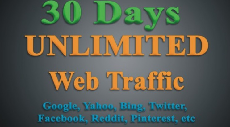 UNLIMITED TARGETED Web Traffic From Worldwide for 30Days to your Website