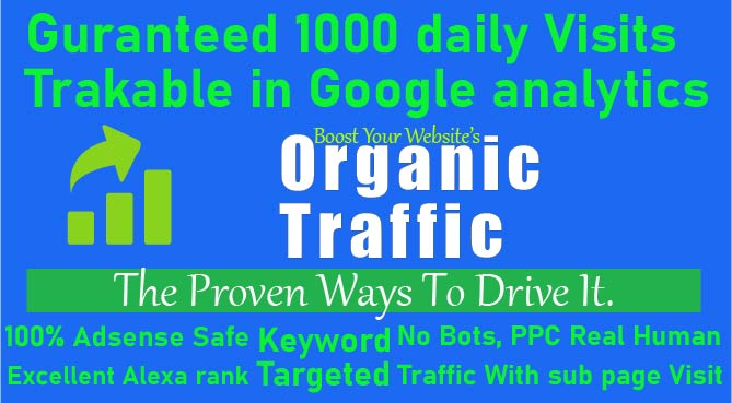 Targeted Real Human Nich Related Traffic Through Social Networks
