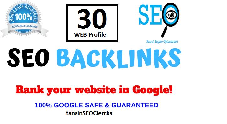 I Manually Do 30 EFFECTIVE HIGH AUTHORITY WEB Profile Backlink For Rank On Google