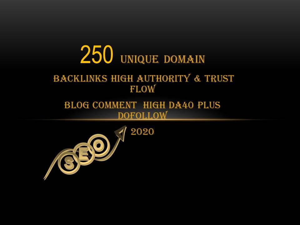 I will do 250 Unique Domain High DA PA With Dofollow