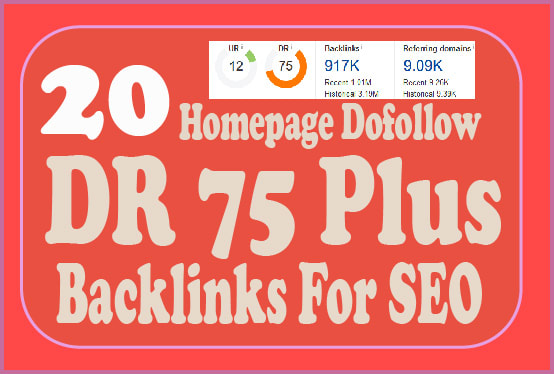provide DR 50 to 75 homepage pbn backlinks for seo