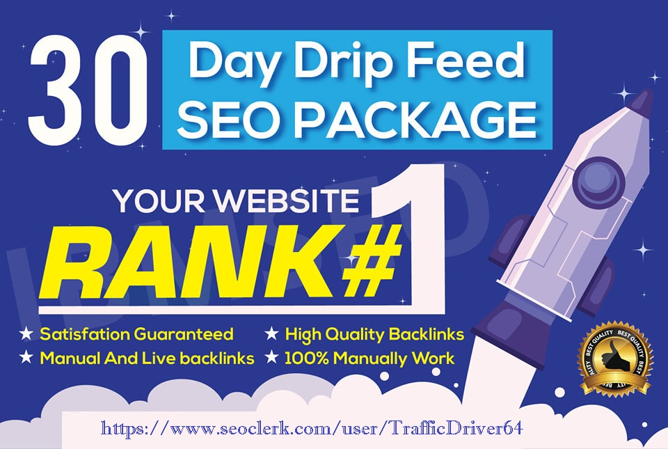 I will do 30 days drip feed 20 Do Follow Blog Comments SEO link building service daily