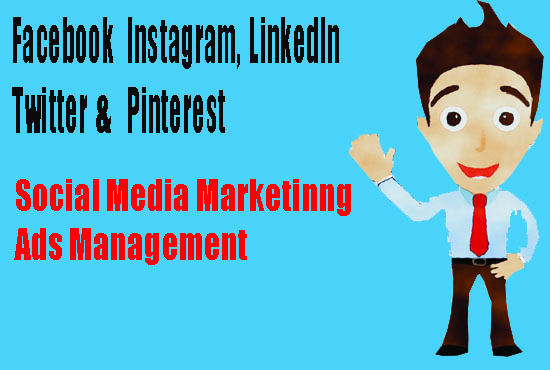 I will be your professional social media manager and personal assistant