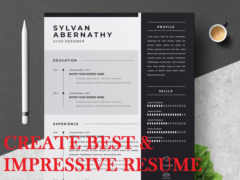 I can Provide You Impressive,  Best & Professional Resume within 24 Hours