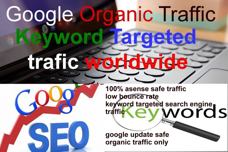 Keyword Targeted Google Organic Traffic with Low Bounce Rate for your website
