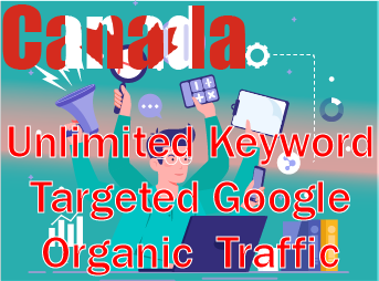 Canada Targeted organic traffic from google to your site