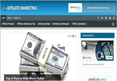 Affiliate Marketing PLR Niche Blog