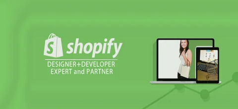 I will setup,edit theme shopify or any thing about shopify api