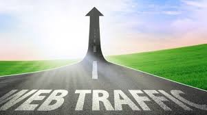 i will generate 15000 USA targeted web traffic to your website or blog