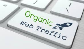 i will drive 50,000 Keyword Targeted Organic Traffic with Low Bounce Rate to your website