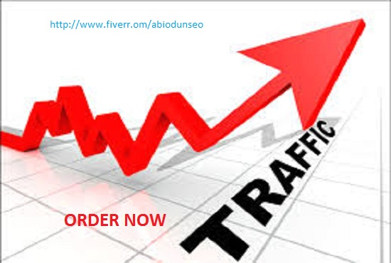 I will drive 30,000 targeted traffic to your website
