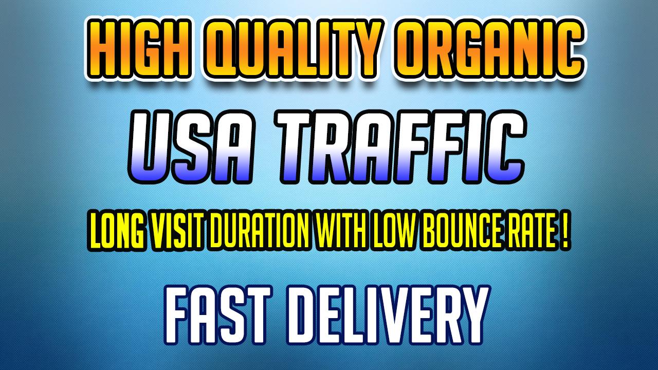 niche targeted USA web traffic