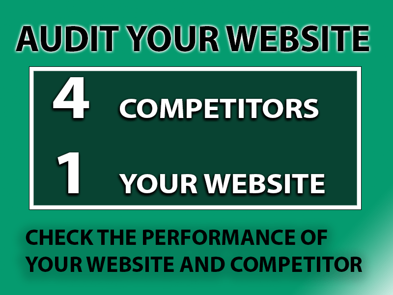 Audit your website and Competitor check the performance and strategy how to get more business