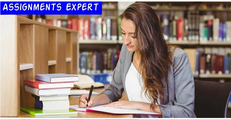 I will do essay writing and assignment writing for you