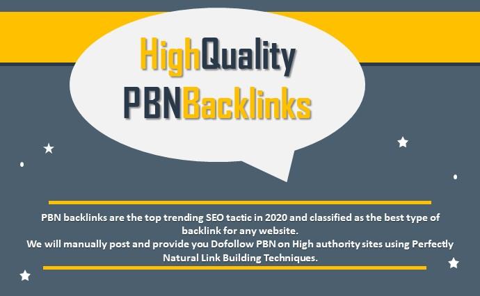 Bulid 10 high pa da tf cf homepage pbn backlinks dofollow quality links With 1000 2nd Tier links