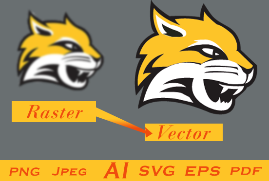Vector Tracing or Redesigning of an Image