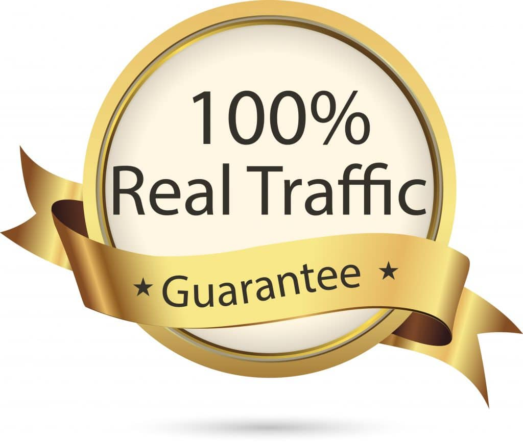 REAL HUMAN SEARCH ENGINE TRAFFIC To Your Website