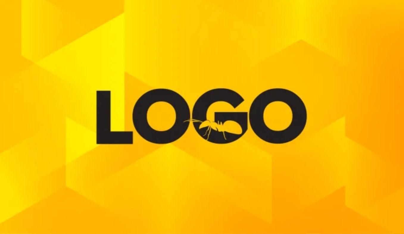 I will create 2 stunning logo designs
