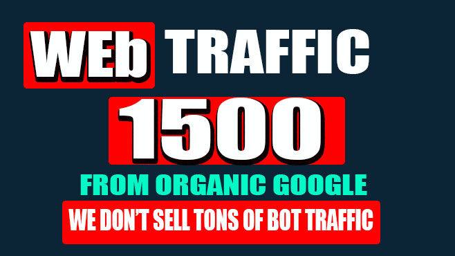 Bring 300 visitor each day for 5 days organic usa web traffic
