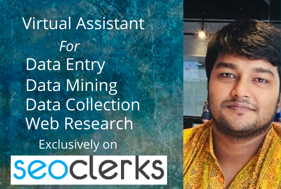 I Will be Ur Virtual assistant For data Entry And data mining job