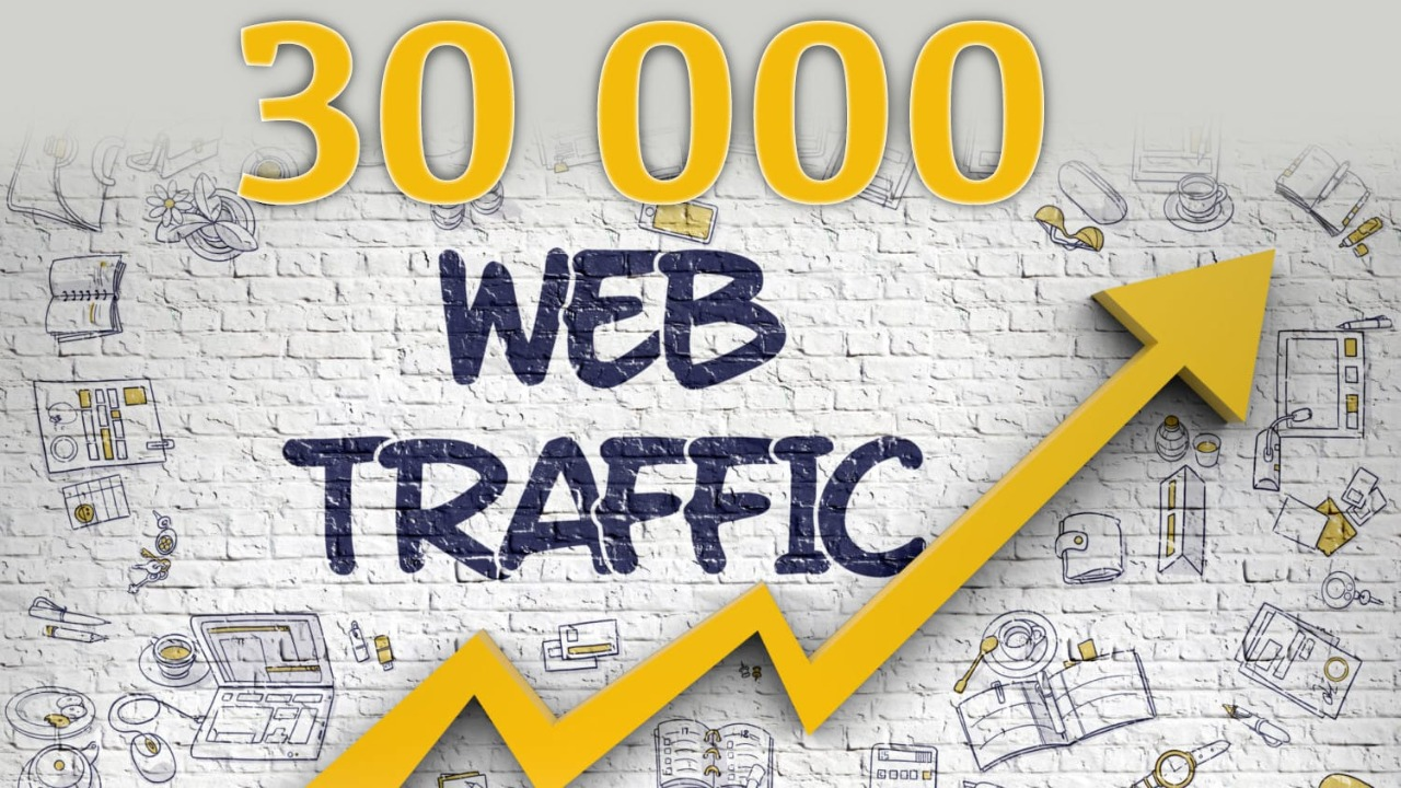 Real organic traffic through search engine 1000+ daily for 1 months