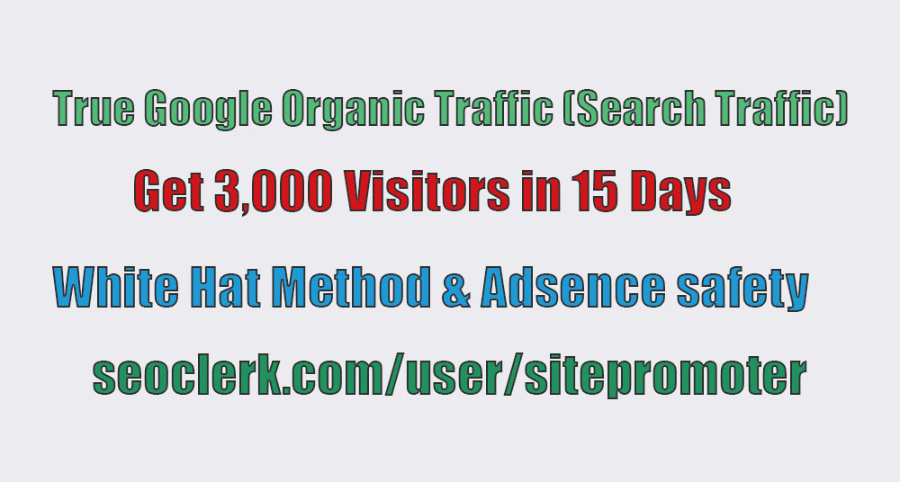 Get Daily 200+ Real Organic Traffic By Search Engine for 15 days