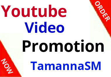 high quality youtube video fast promotion and social media marketing
