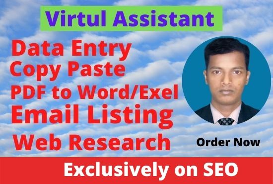 I will do 15 Page data entry and data management