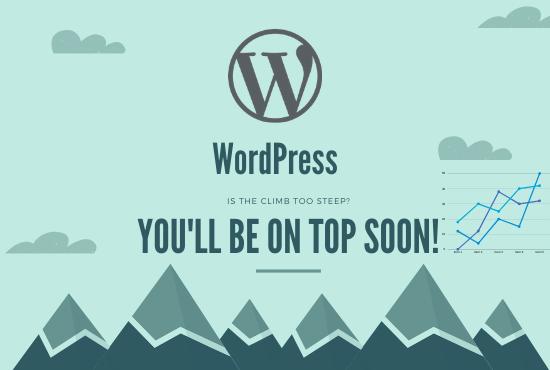 I will install and set up a pragmatic Wordpress website