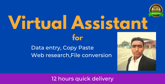 I will be your Virtual assistant for Data entry & web research