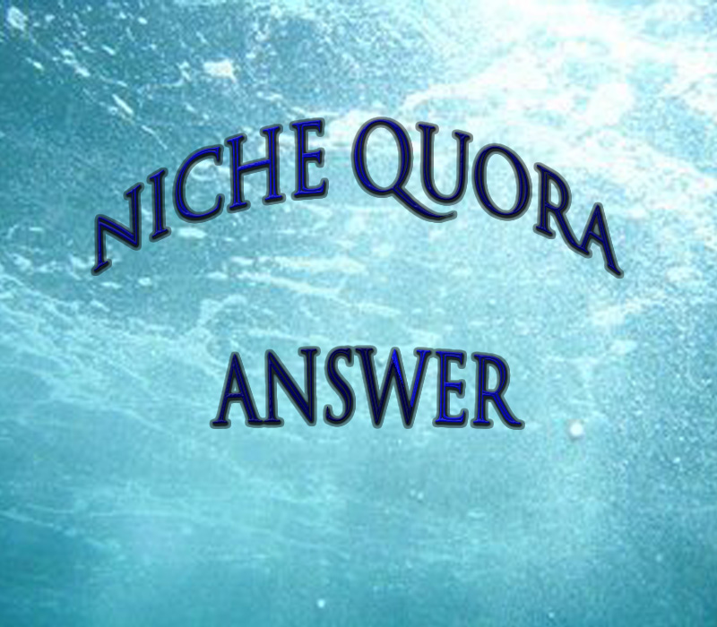 Provide Niche Relevant 40+ Quora account targeted traffic.