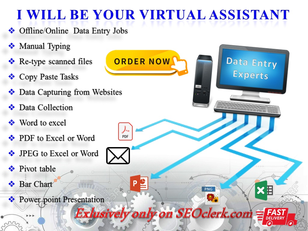 I Will Do Any Kind of Data Entry,  Copy Paste,  Pivot,  chart and Typing Work for 2 hours