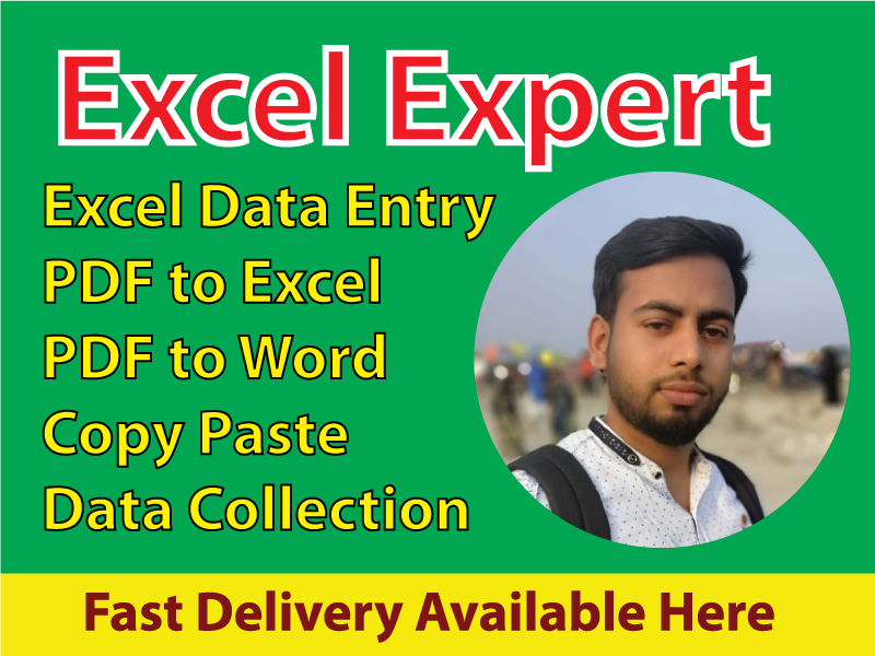 I will professionally do excel data entry, typing,  copy paste,  data entry
