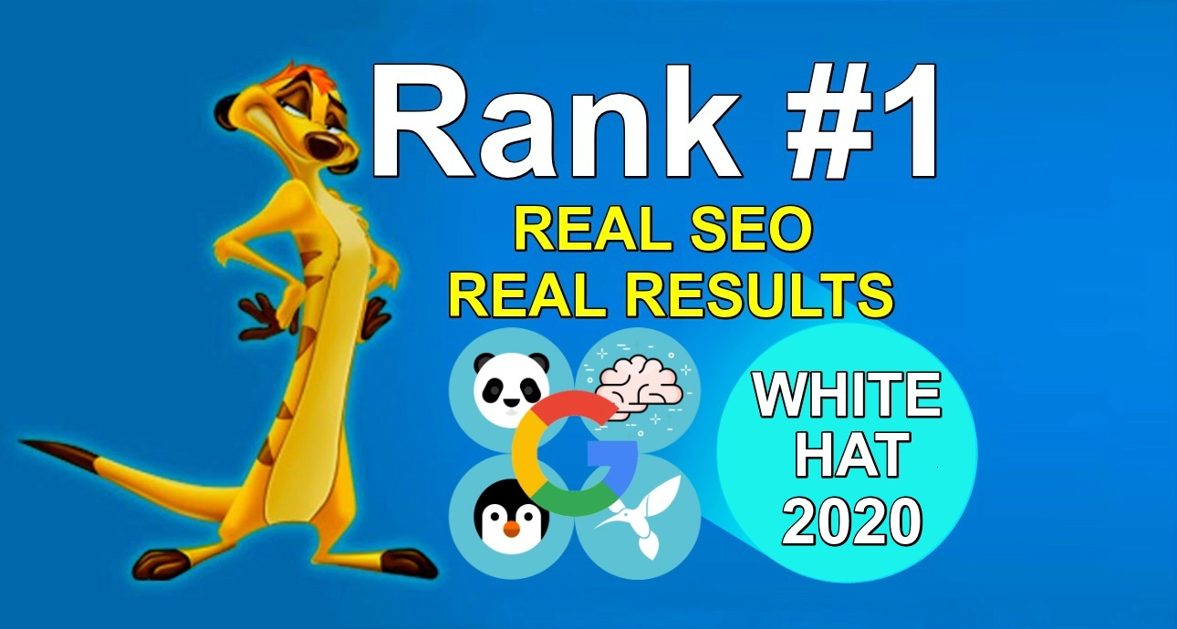 Create 100 Manually 300 Profile High Authority Backlinks-White Hat