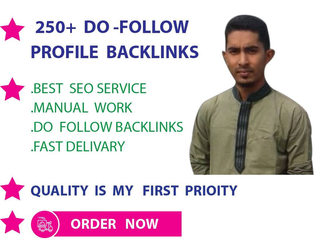 I will create 250 high da profiles backlinks for your website