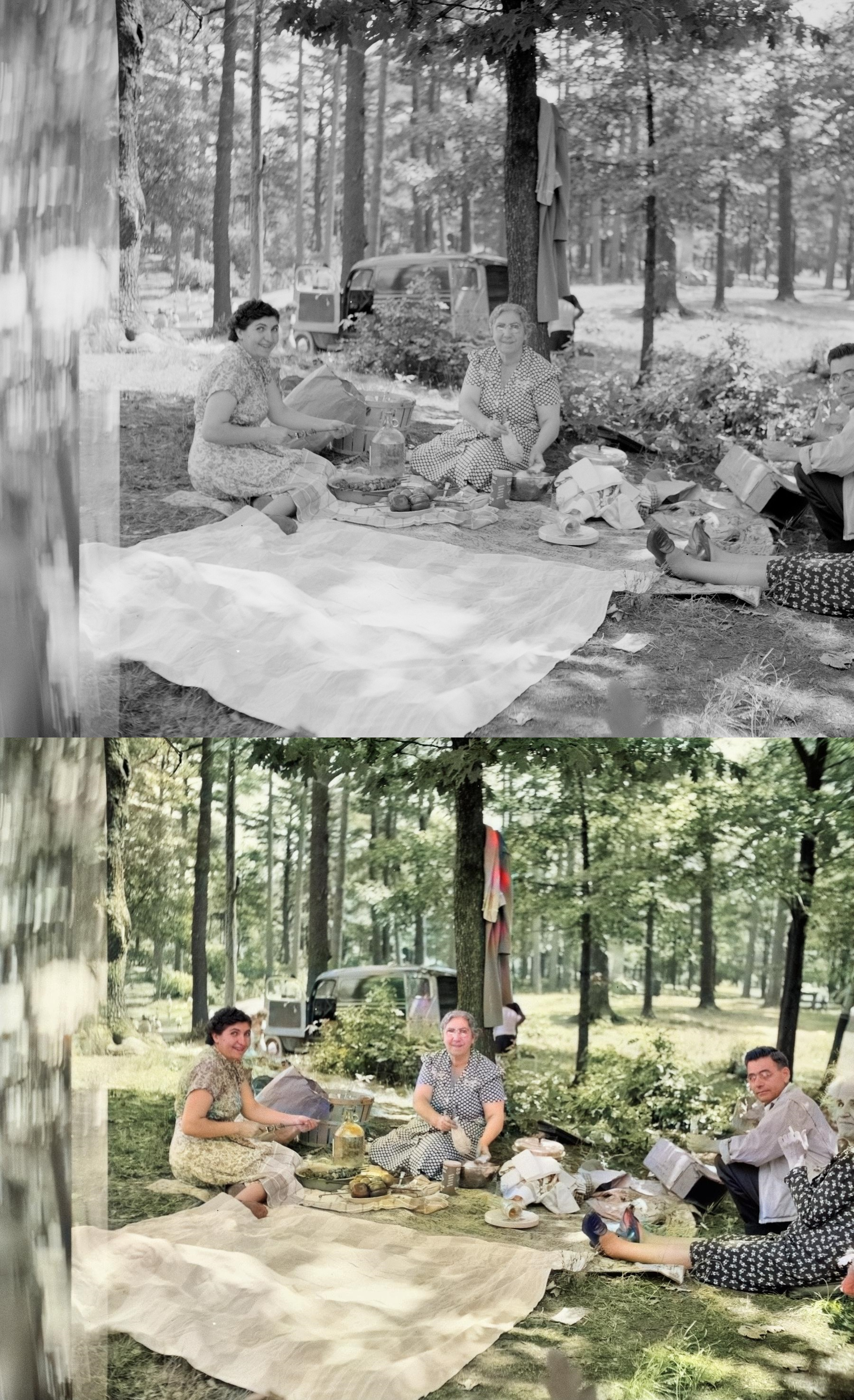 Color Restore,  Colorize B& W Photos and Images FAST. FREE SAMPLE BEFORE YOU ORDER TODAY