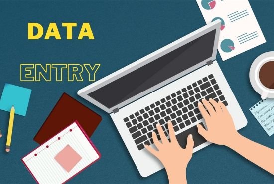 I will be your virtual assistant for data entry,  data mining,  copy paste.