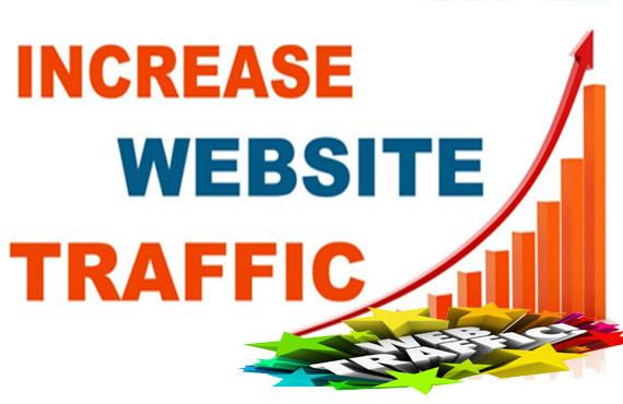 Send 25000+ Real Human Traffic by Google Yahoo social media Youtube etc