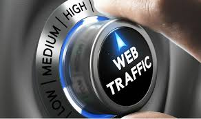 50000+ real human Unique usa targeted traffic