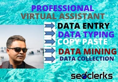 Data Entry,  Data Management and Data Typing.