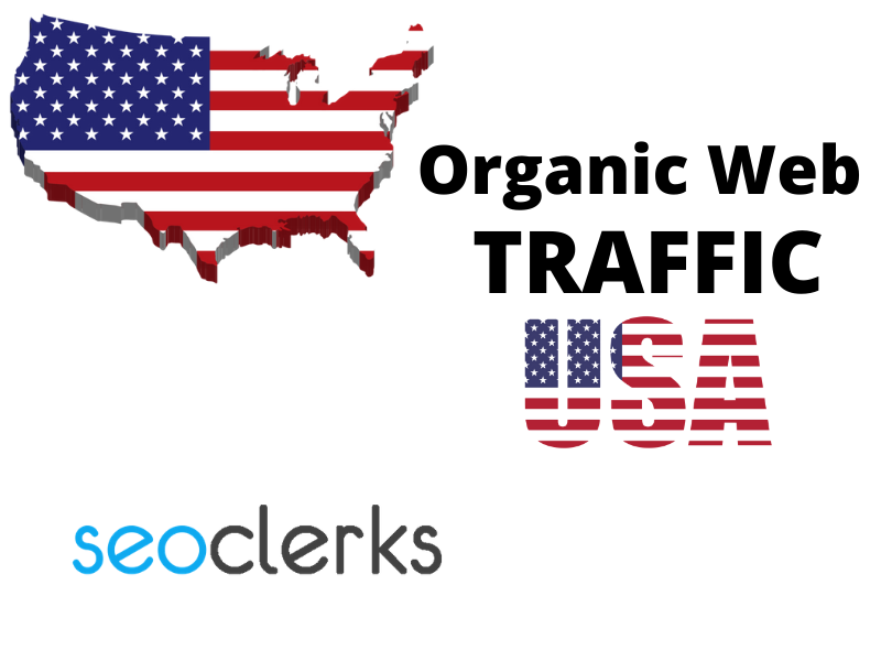 I will do niche targeted USA web traffic