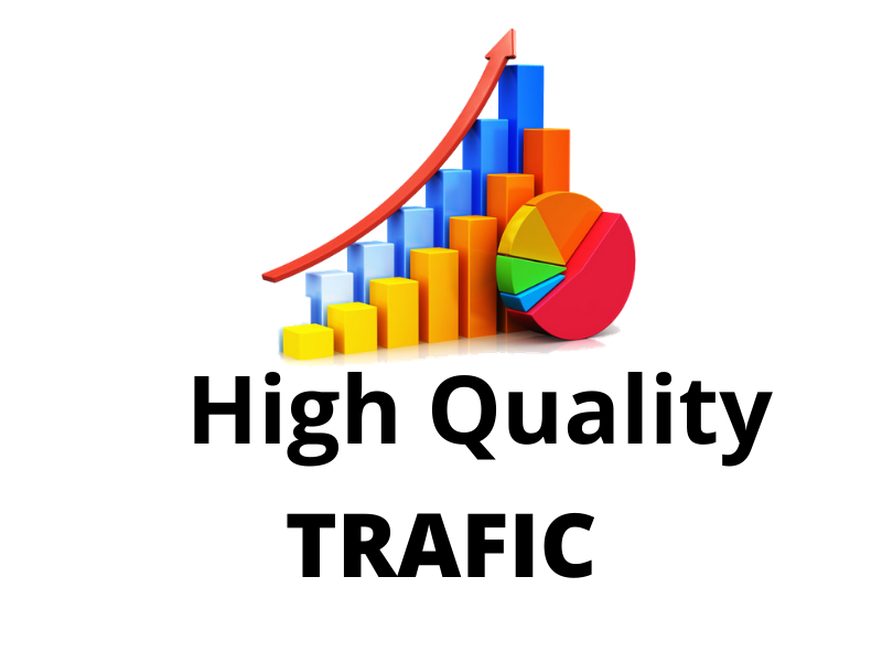 I will do UNLIMITED and genuine real Website TRAFFIC